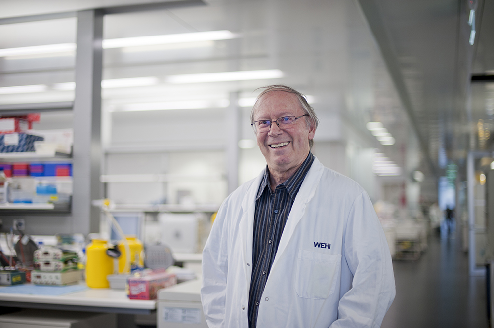 In Australia, Jerry M. Adams, Ph.D., Walter & Eliza Hall Institute of Medical Research, leads another prestigious SCOR program. Adams and his colleagues ...