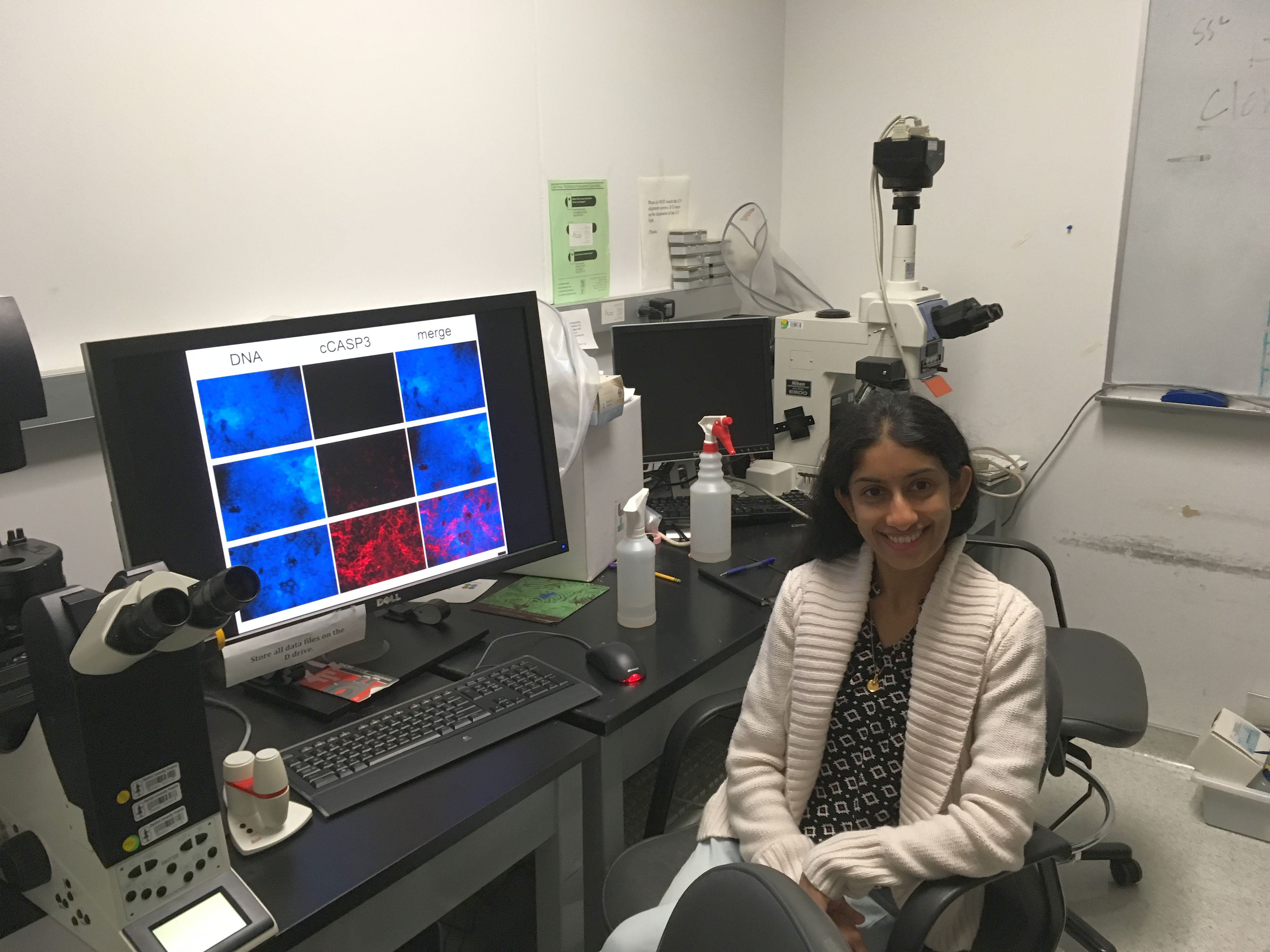 International Women's Day: Celebrating Women in Science